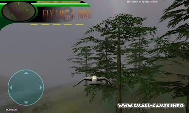 Arowana raising from fry APK Download Free - appjap.com