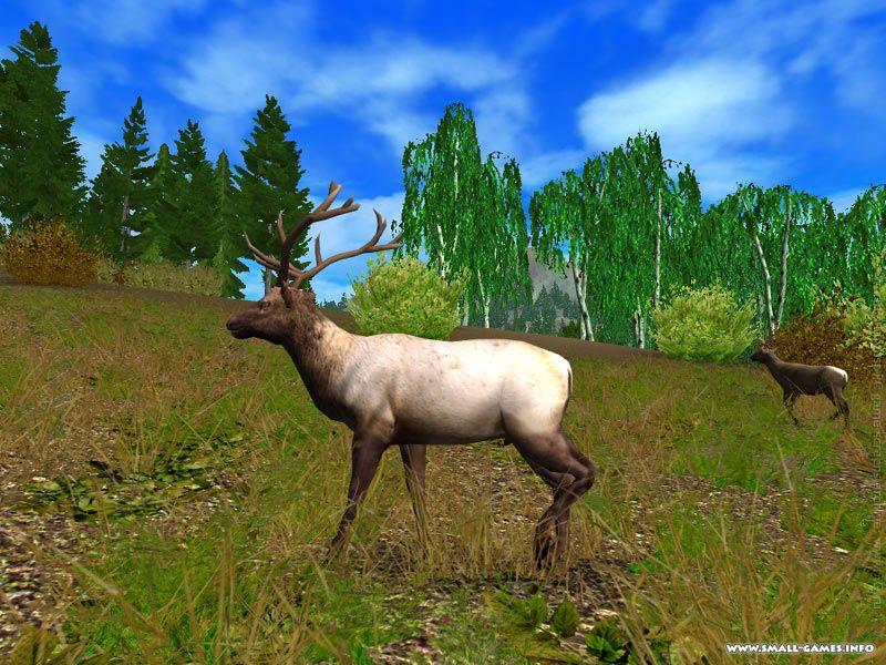 Игра охота 2011