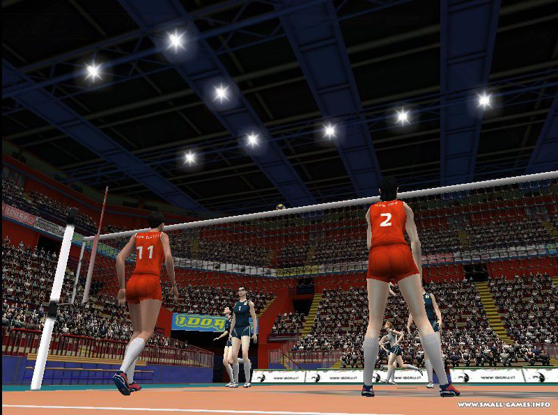 требования Волейбол 2004: