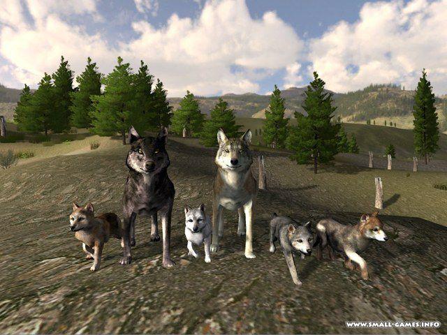 скачать игру Wolfquest и Wolfquest Survival Of The Pack - фото 5