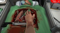 Surgeon Simulator 2013: Anniversary Edition + Inside Donald Trump / +OST / +GOG