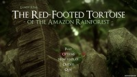 The Red-Footed Tortoise of the Amazon Rainforest