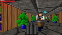 Wolfenstein 3D - The Final Solution